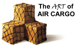air shipment cargo зурган илэрцүүд